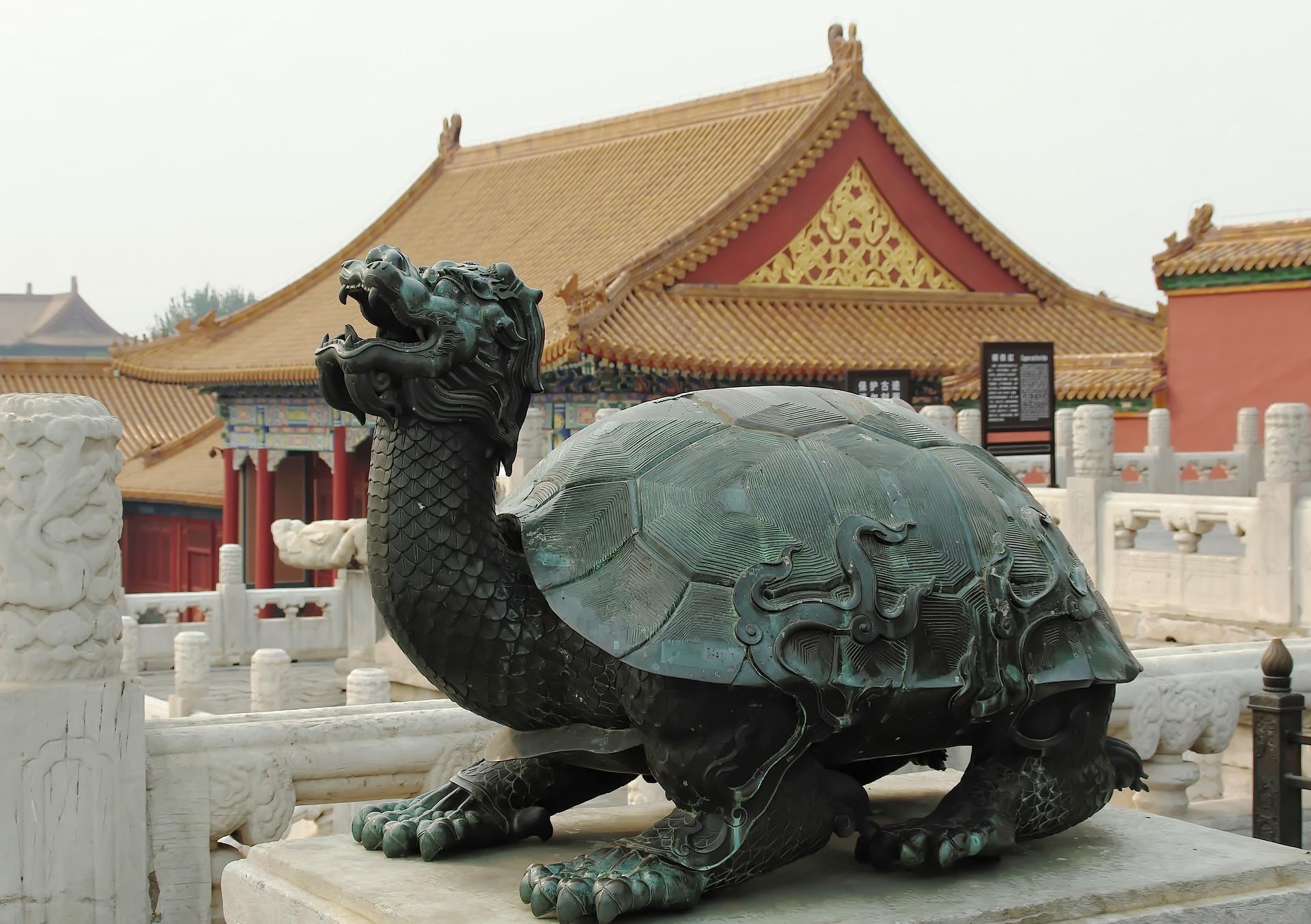 Chinesische Schildkröte